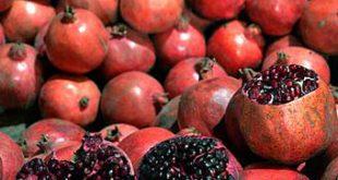 قیمت انار در اروپا